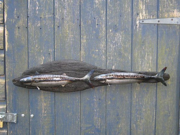 metal-freestyle-wall-art-northern-arm-pair-of-mackerel